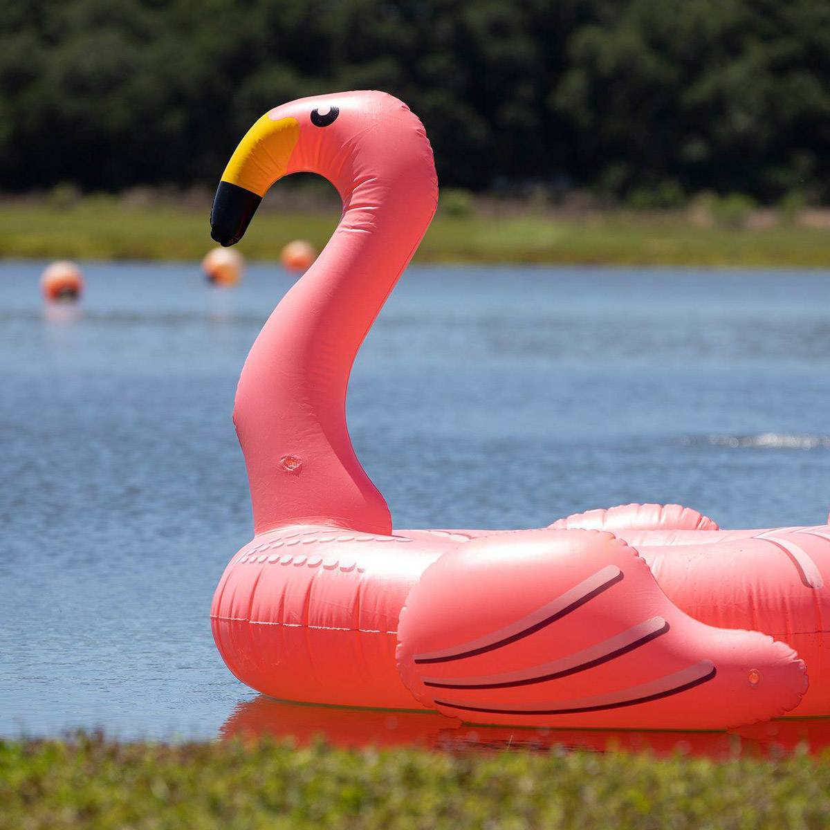 Flamingo at the raft dives at Skydive City Z-Hills.