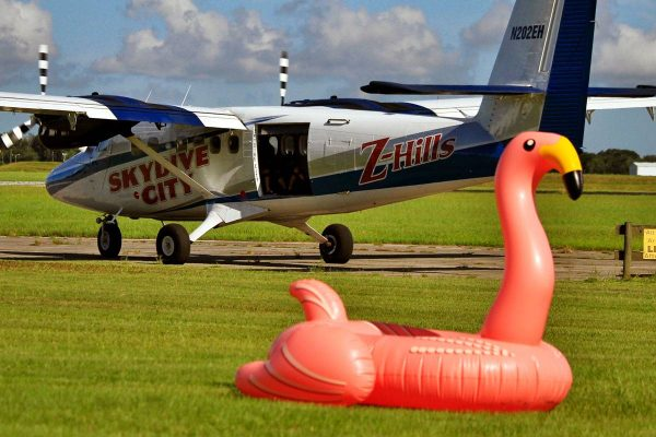 Twin Otter airplane sitting on runway track with pink flamingo in the distance.