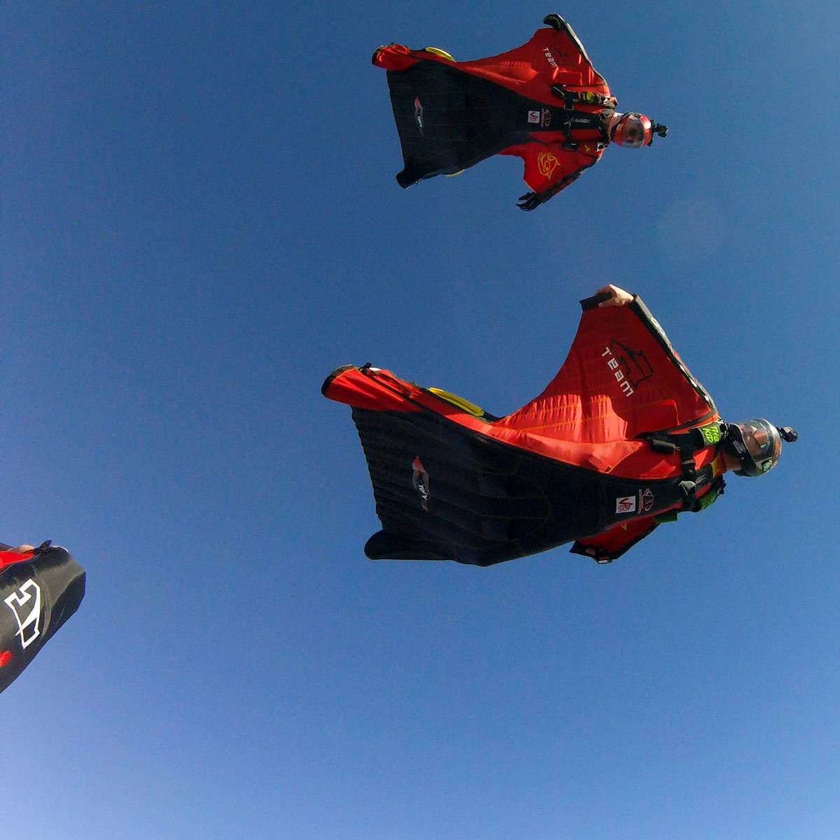 Jumpers enjoying wingsuit flying at Skydive City Z-Hills